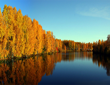 Lapland Nature Day C